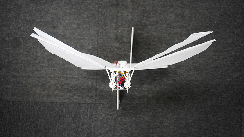 Head-on view of a white flying lightweight robot that stands on the ground motionless