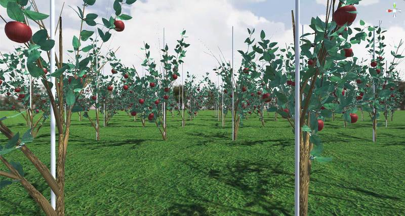 "Virtual farming with ""Smart3tene"" for smart agriculture"