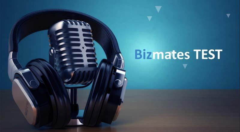 Bizmates TEST assesses English business communication skills too