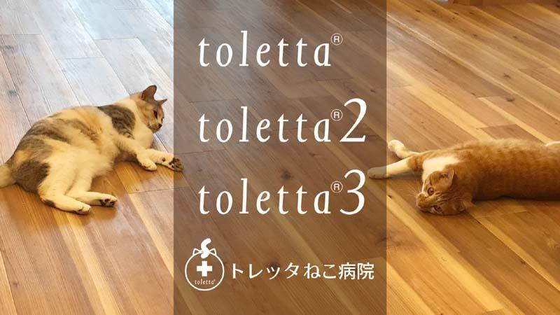 """Hachi Tama raises $930,000 for """"toletta"""" smart cat toilet"""