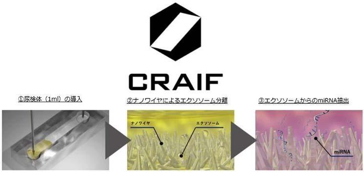 Craif