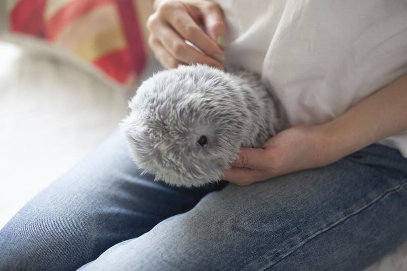 """Launch of """"MOFLIN,"""" a fluffy AI pet that is as adorable as a real living creature"""