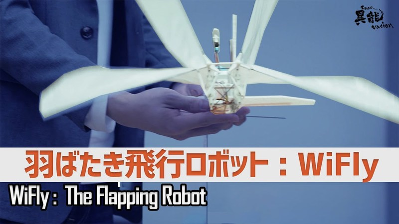 Flapping Flying Robots Open New Needs in the Semiconductor Industry